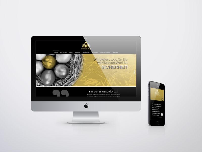 Capital Immo Website